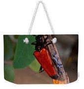 Red Beetle Rising Weekender Tote Bag