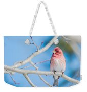 Red Bird Blue Sky Warm Sun Weekender Tote Bag