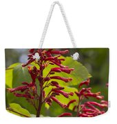 Red Buckeye - Aesculus Pavia - Wildflowers Weekender Tote Bag