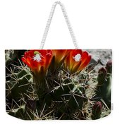 Red Cactus Flower  Weekender Tote Bag