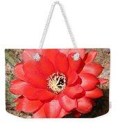 Red Cactus Flower Square Weekender Tote Bag