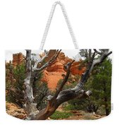 Red Canyon Tree And Rocks Weekender Tote Bag