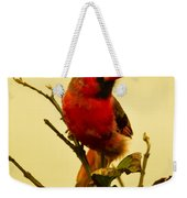 Red Cardinal No. 2 - Kauai - Hawaii Weekender Tote Bag