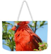 Red Cardinal Pink Blooms Weekender Tote Bag