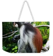 Red Colobus Monkey Weekender Tote Bag