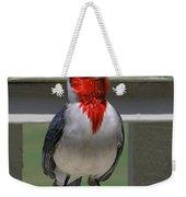 Red Crested Cardinal Weekender Tote Bag