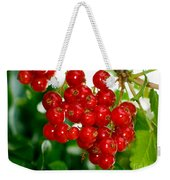 Red Currants Ribes Rubrum Weekender Tote Bag