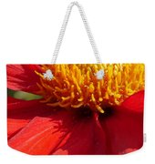 Red Dahlia Coccinea Weekender Tote Bag