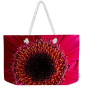 Red Daisy Close Up Weekender Tote Bag