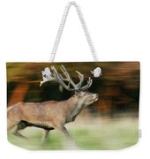 Red Deer Cervus Elaphus Stag Running Weekender Tote Bag