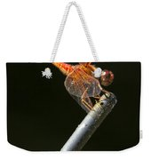 Red Dragonfly On An Antenna Weekender Tote Bag