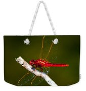 Red Dragonfly Weekender Tote Bag