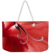 Red Dream - Gladiolus Weekender Tote Bag