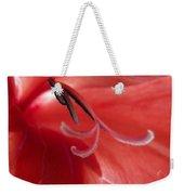 Red Dream - Gladiolus Weekender Tote Bag by Ben and Raisa Gertsberg