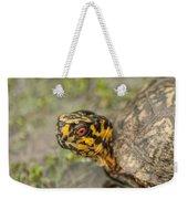 Red Eyed Alabama Box Turtle - Terrapene Carolina Weekender Tote Bag