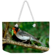 Red-faced Warbler With Caterpillar Weekender Tote Bag