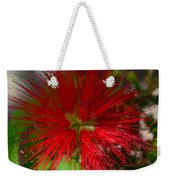 Red Fairy Duster Calliandra Californica Weekender Tote Bag