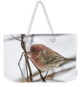 Red Finch Weekender Tote Bag