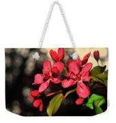 Red Flowering Crabapple Blossoms Weekender Tote Bag