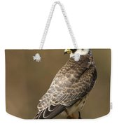 Red Footed Falcon Falco Vespertinus Weekender Tote Bag