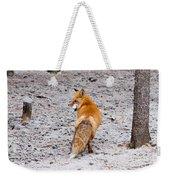 Red Fox Egg Thief Weekender Tote Bag