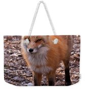 Red Fox In Prospect Park Weekender Tote Bag