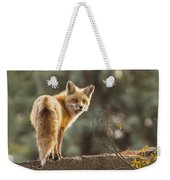 Red Fox In The Sunset Weekender Tote Bag