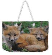 Red Fox Kit Stays Alert Weekender Tote Bag