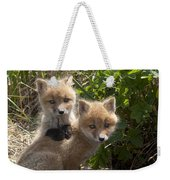 Red Fox Kits Playing Alaska Weekender Tote Bag