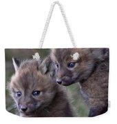 Red Fox Kits Weekender Tote Bag