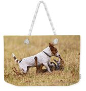 Red Fox Playing With Jack Russell Weekender Tote Bag