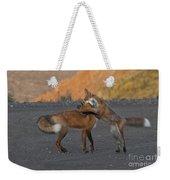Red Foxes Weekender Tote Bag