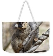 Red-fronted Lemur  Eulemur Rufifrons Weekender Tote Bag