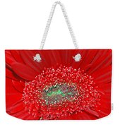 Red Gerbera Flower  Weekender Tote Bag