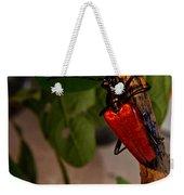 Red Glowing Beetle Weekender Tote Bag