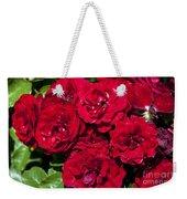 Red Lavaglut Lavaglow Floribunda Roses Weekender Tote Bag