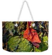 Red Leaf On Moss Weekender Tote Bag