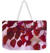 Red Leaves - Euphorbia Cotinifolia - Tropical Smoke Bush Weekender Tote Bag