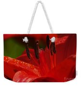 Red Lily Close Weekender Tote Bag