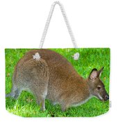 Red Necked Wallaby Weekender Tote Bag