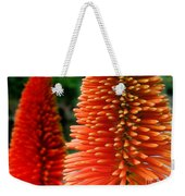 Red-orange Flower Of Eremurus Ruiter-hybride Weekender Tote Bag
