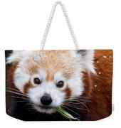 Red Panda  Ailurus Fulgens Eating Weekender Tote Bag