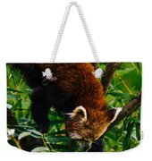 Red Panda Tree Climb Weekender Tote Bag