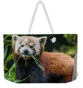 Red Panda With An Attitude Weekender Tote Bag