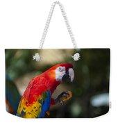 Red Parrot  Weekender Tote Bag