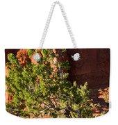 Red Rocks And Tree 1 Weekender Tote Bag
