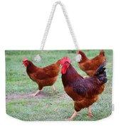 Red Rooster And Hens Weekender Tote Bag