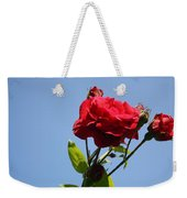 Red Roses With Blue Sky Background Weekender Tote Bag