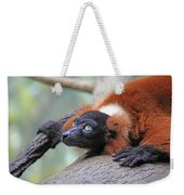 Red-ruffed Lemur Weekender Tote Bag by Karol Livote