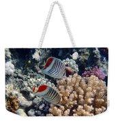 Red Sea Beauty 5 Weekender Tote Bag